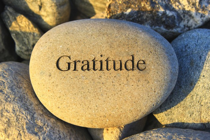 Gratitude, a powerful rest button for when times are tough.