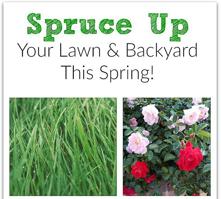 Spruce Up Your Lawn And Backyard This Spring!
