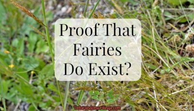 Proof That Fairies Do Exist From Deb's Random Writings.