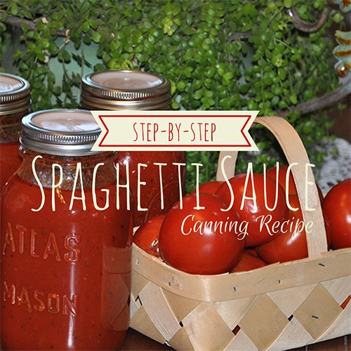Canning Spaghetti Sauce- Step By Step Instructions from Our Simple Homestead.