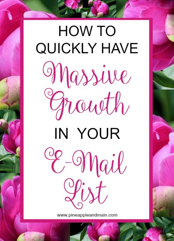 How To Quickly Have Massive Growth In Your Email List from Pineapple and Main.
