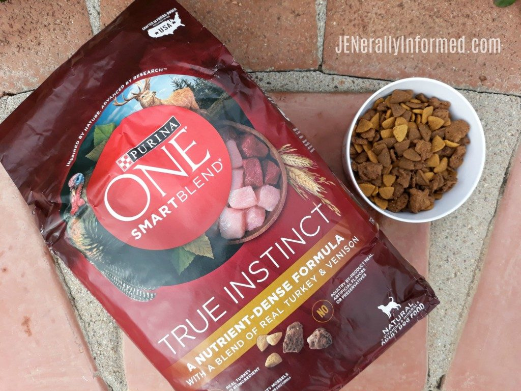 Our experience with the 28-Day Purina ONE® Challenge With Eddie The Wonder Dog! #PurinaONEVisibleDifferences @purinaonedog @Walmart #ad