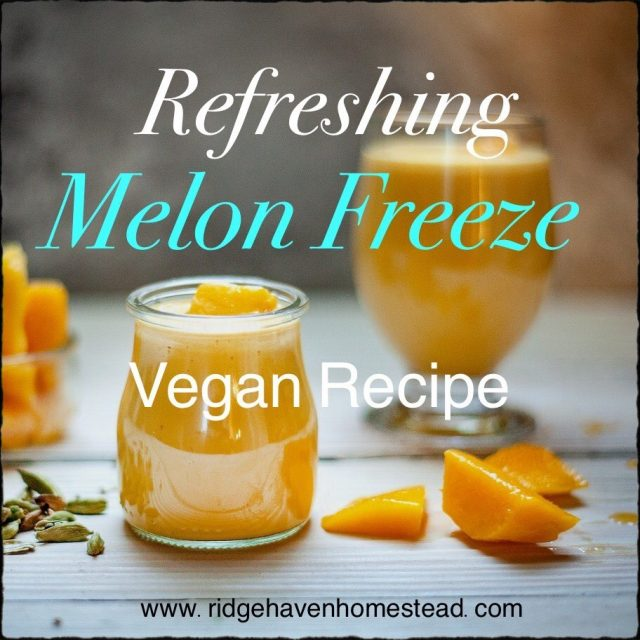 Refreshing Melon Freeze From Ridgehaven Homestead.