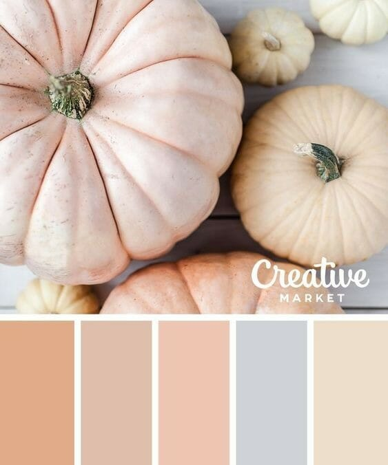 Ten Fall Color Combinations From Country Road 407.