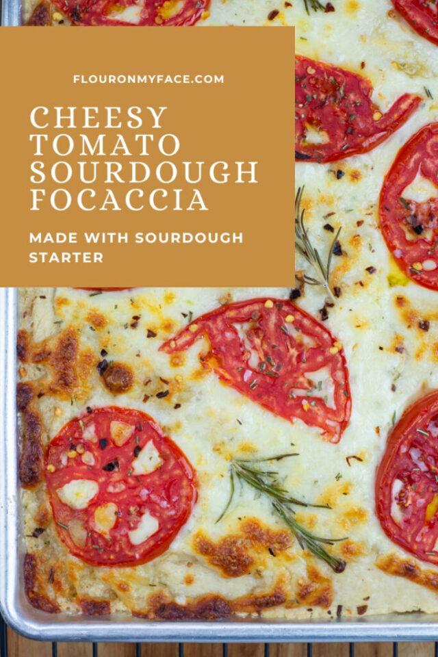 Cheese Tomato Sourdough Focaccia From Flour On My Face.