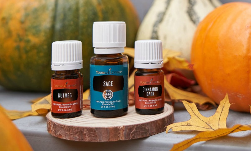 Pull out a blanket and pour yourself a cup of cider as I share my favorite Fall Young Living Essential Oils!