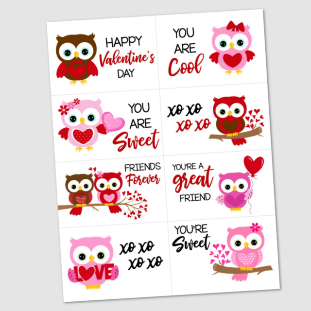 Valentine's Day Cards With Cute Owl Designs from The Krafty Planner.