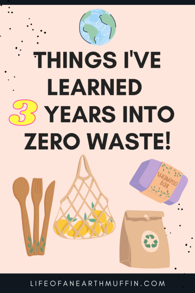 The Amazing Things I've Learned 3 Years into Zero Waste from Life of an Earth Muffin.